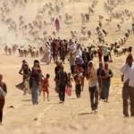 Мирные иракцы укрываются в горной гряде Синджар от боевиков